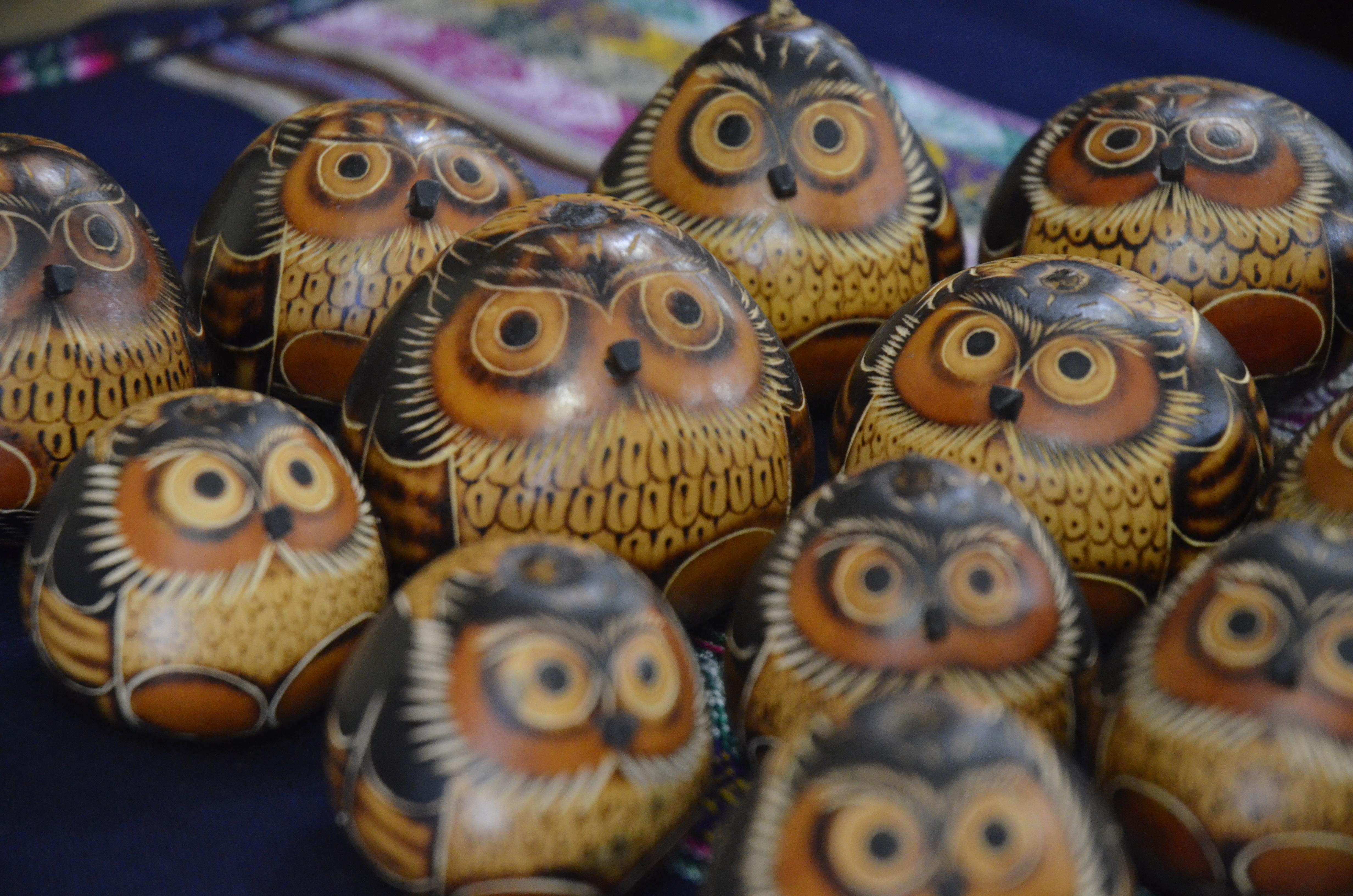 owl gords